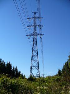 Dodavatelé energií v Česku se již chystají na snižování cen za elektřinu i plyn