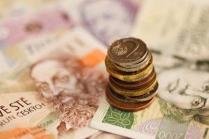 Česká národní banka po třech a půl letech přestala ovlivňovat českou měnu.