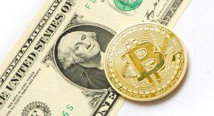 Prudký nárůst ceny bitcoinu přitahuje stále více investorů začátečníků.