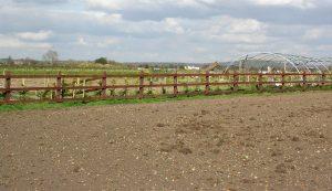 Zemědělská půda se těší čím dál většímu zájmu investorů