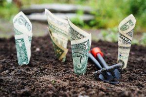 Každý investor by měl své portfolio spravovat velmi pečlivě, pokud chce dosáhnout stabilních výnosů.